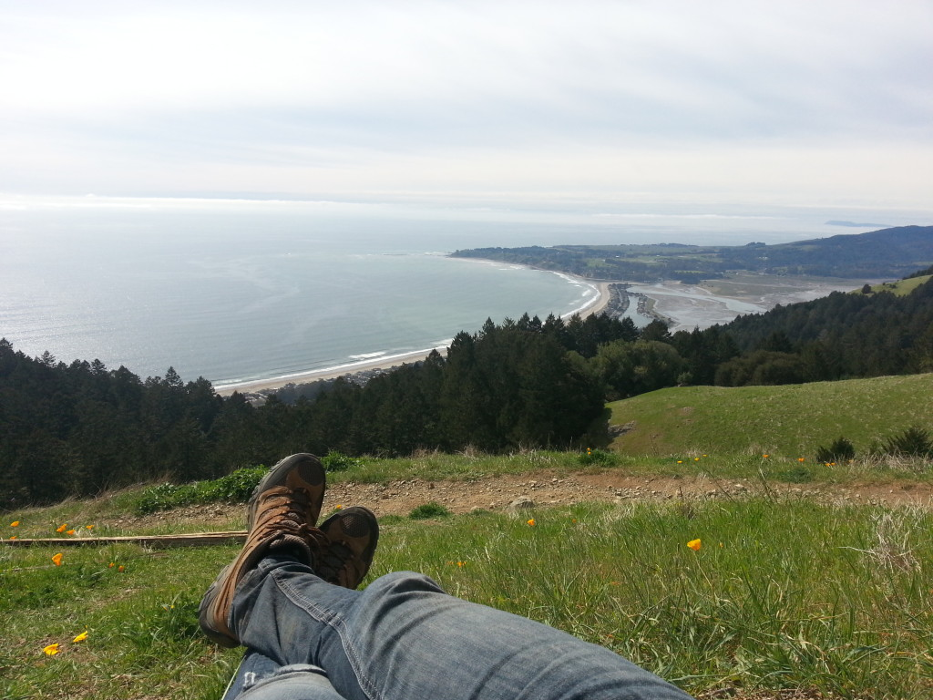 Looking out at Stinson Beach from the coastal trail on Mt. Tam